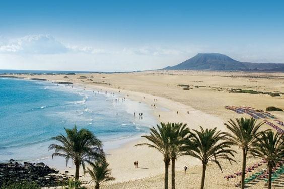 Hotel Riu Palace Tres Islas Oliva Spanien Hotelsearch Com