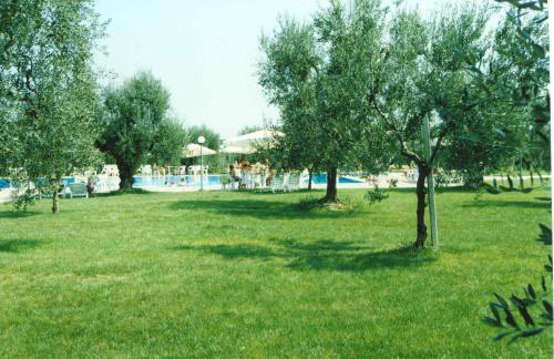 Giardino degli ulivi san nicolo di ricadi calabria italian